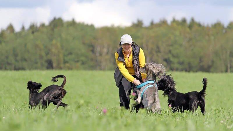 Helena med hundar